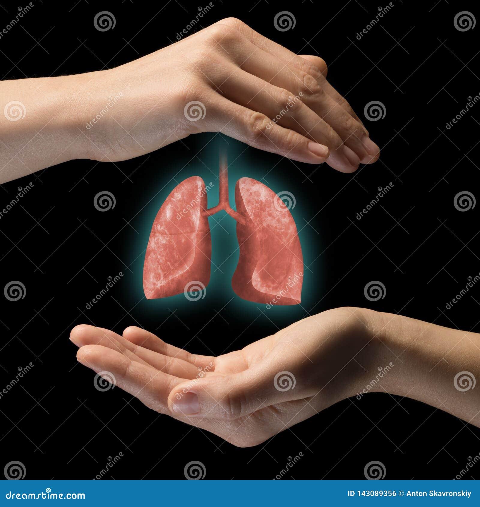 O conceito do pulmões saudáveis