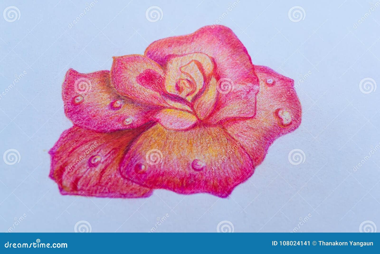 O desenho cor-de-rosa de Rosa no fundo do Livro Branco, olha bonito Para amantes dos pares no dia do ` s do Valentim