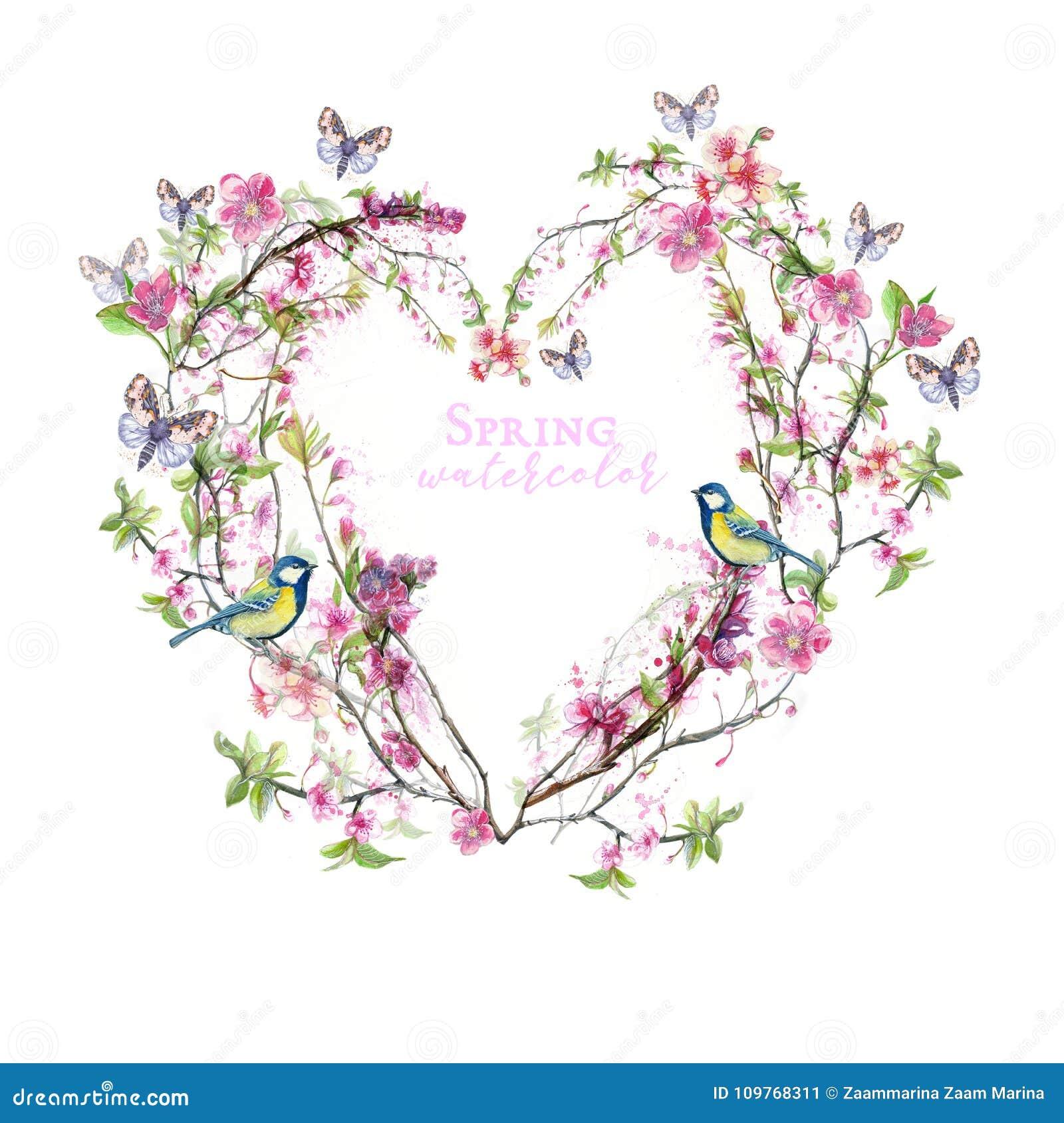 O Desenho Da Aquarela Das Flores De Cerejeira Das Flores De