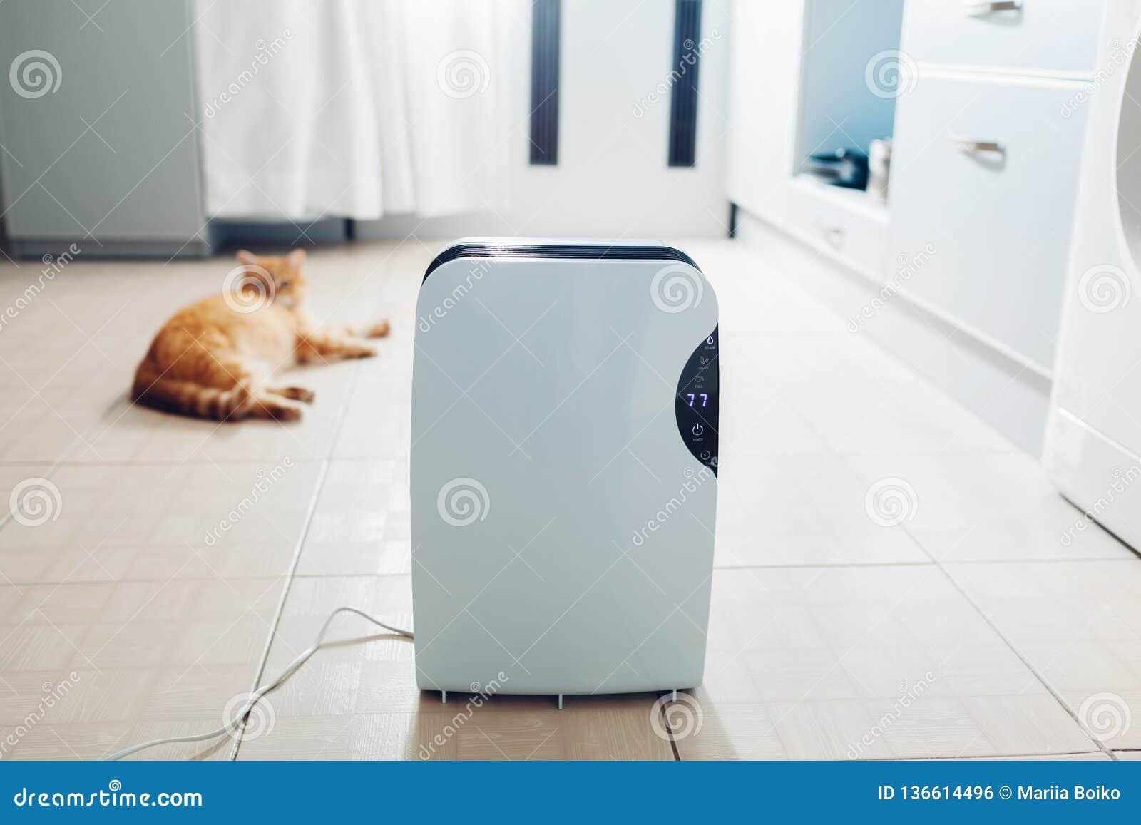 O desumidificador com painel de toque, indicador de umidade, lâmpada uv, ionizer do ar, recipiente da água trabalha em casa Secad