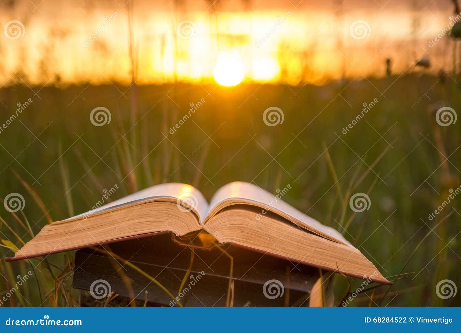O diário aberto do livro do livro encadernado, páginas ventiladas na natureza borrada aterra