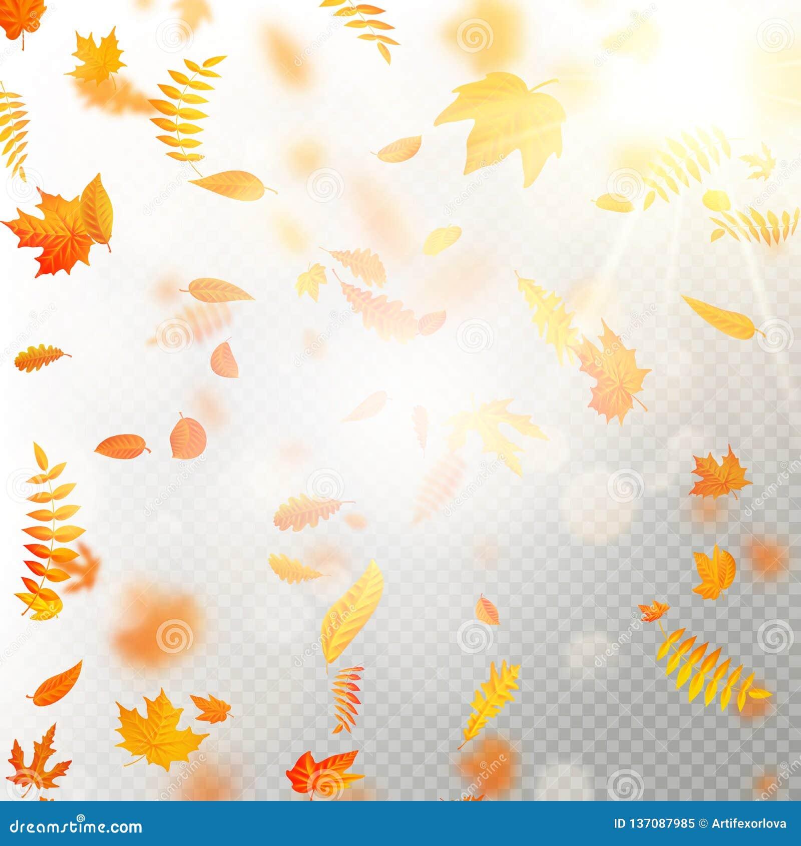 O efeito das folhas de queda do outono mergulha com borrão raso do DOF Molde outonal da queda da folha Cor morna Eps 10