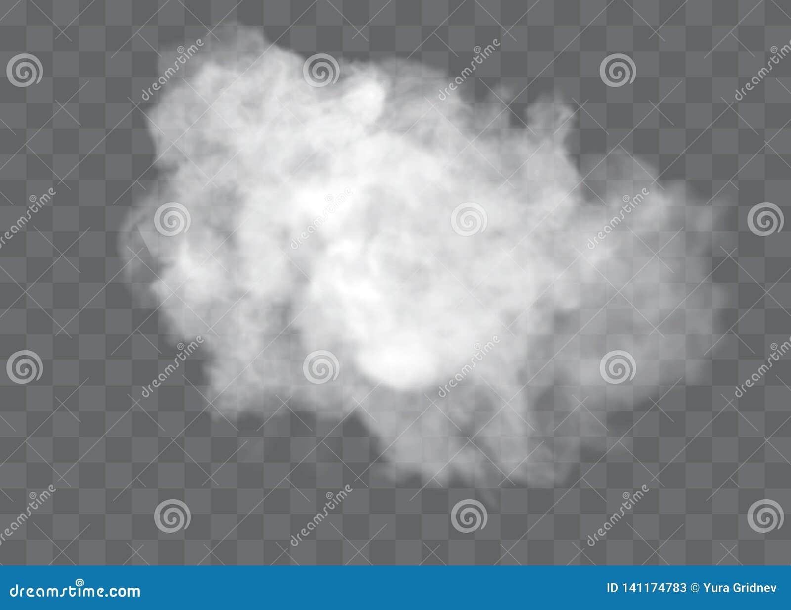 O efeito especial transparente está para fora com névoa ou fumo Vetor branco, névoa ou poluição atmosférica da nuvem