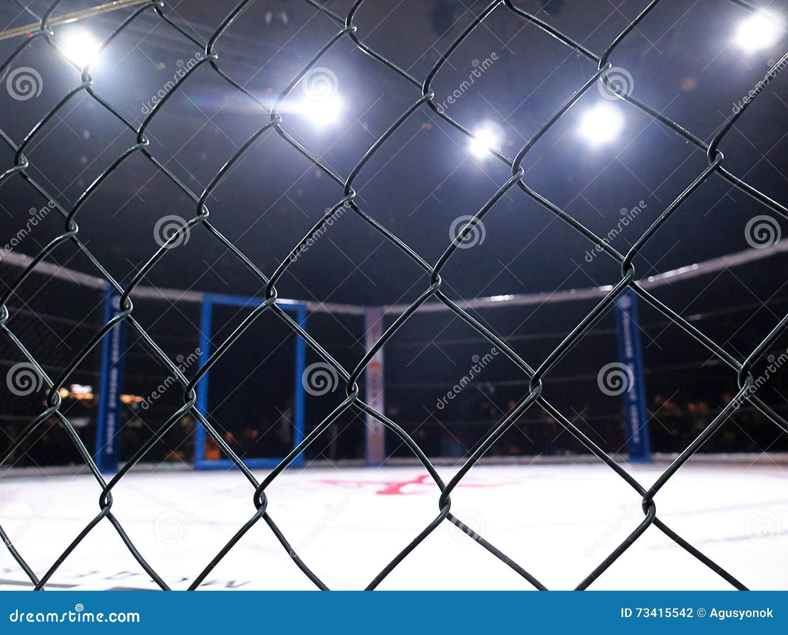O esporte extremo misturou Muttahida Majlis-E-Amal MAXMIX do competiam da competição das artes marciais Anel octogonal para lutas
