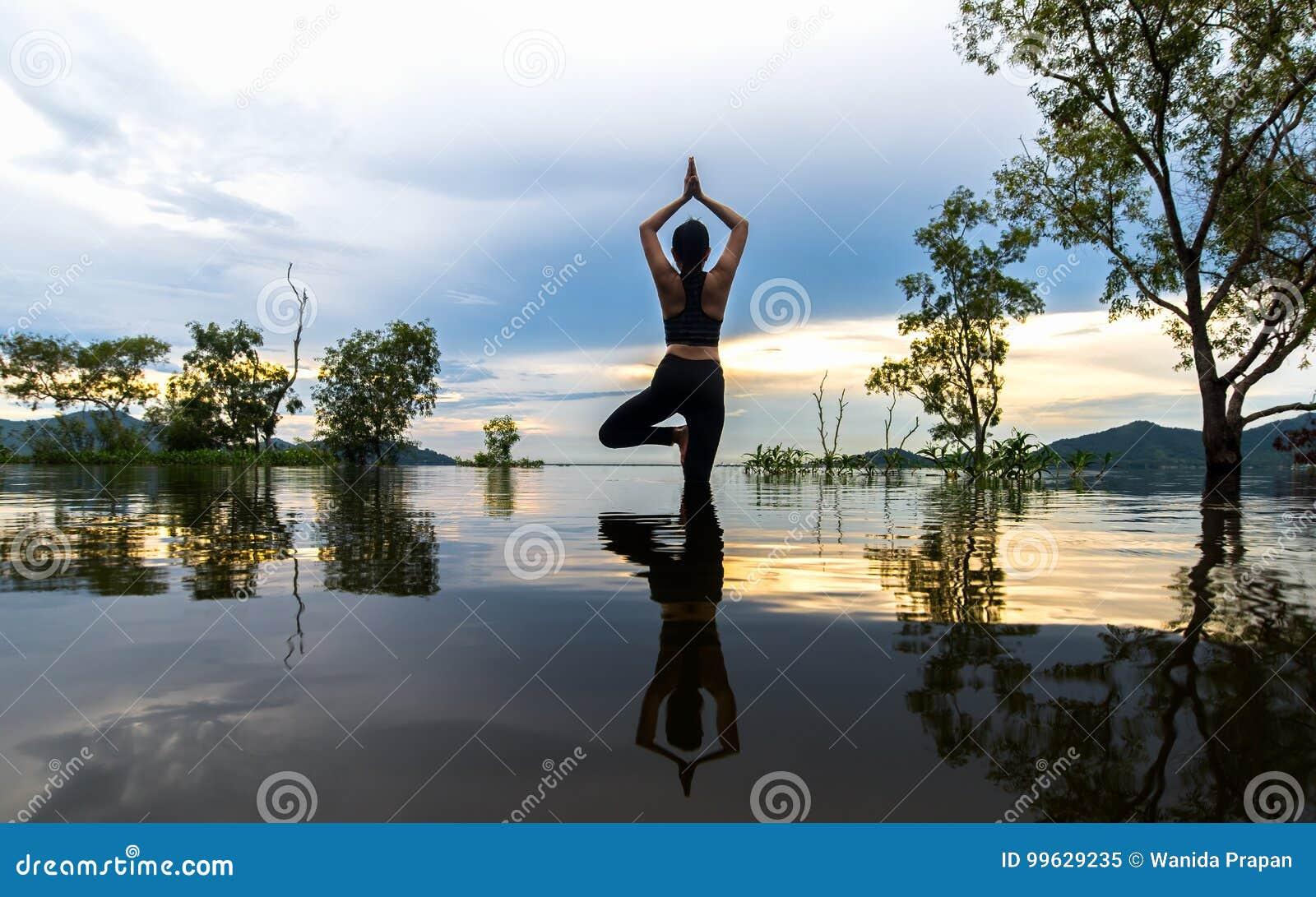 O exercício do estilo de vida da jovem mulher da silhueta vital medita e praticando reflita na inundação as árvores no reservatór