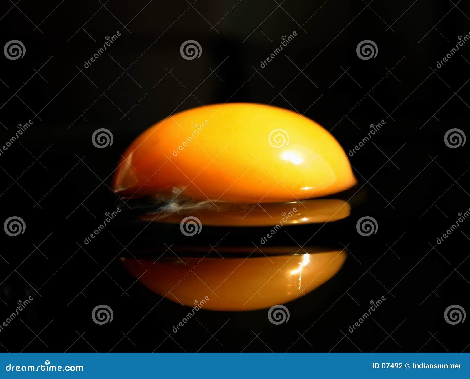 O extremo eggs a série II