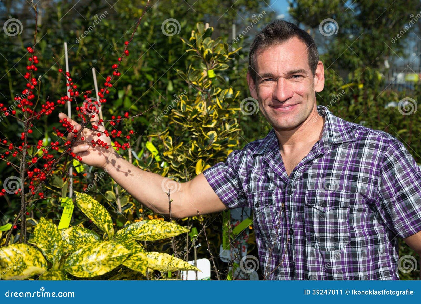 O fazendeiro ou o jardineiro olham o arbusto com bagas