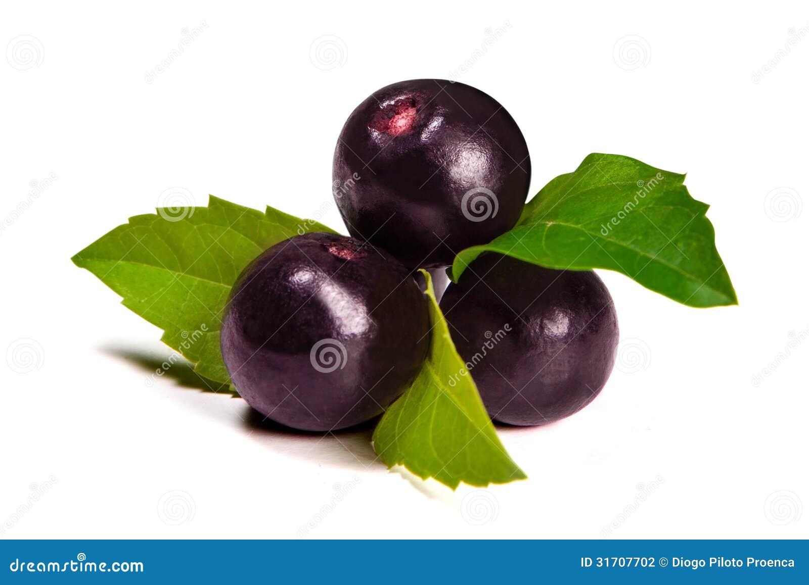 O fruto do acai de amazon