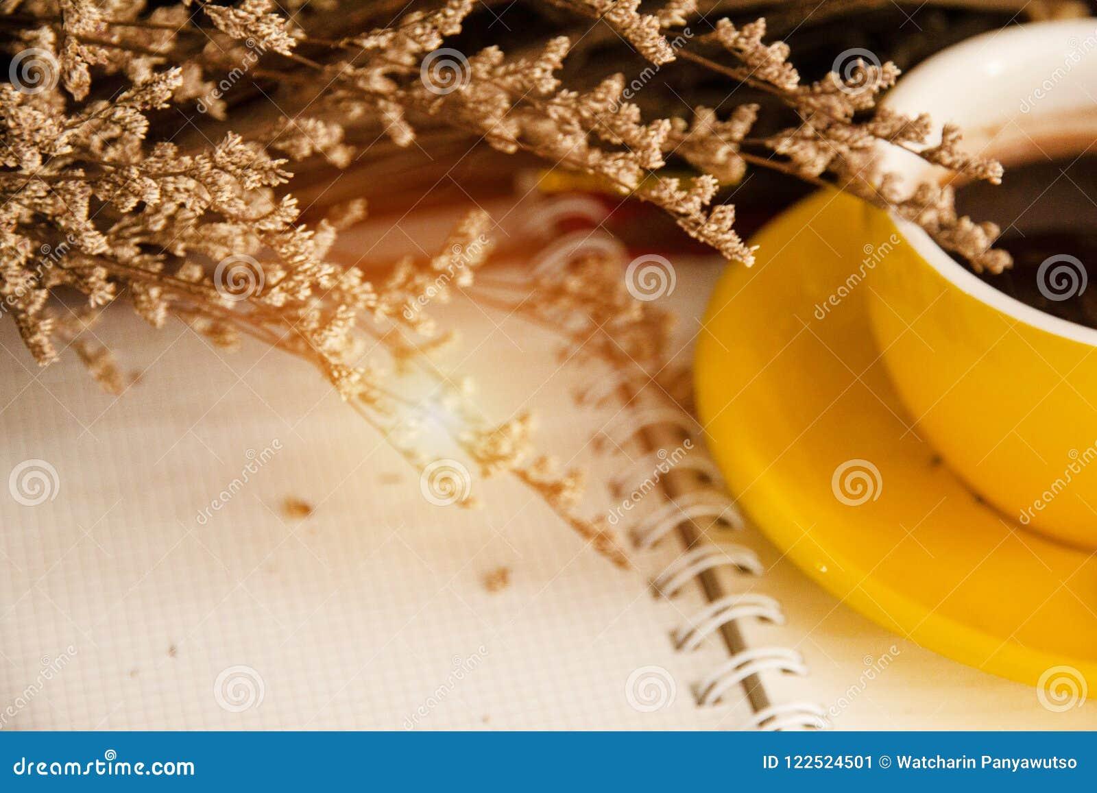 O fundo claro obscuro do projeto da flor secada e a metade do copo de café cerâmico amarelo puseram o estilo sobre aberto do livr