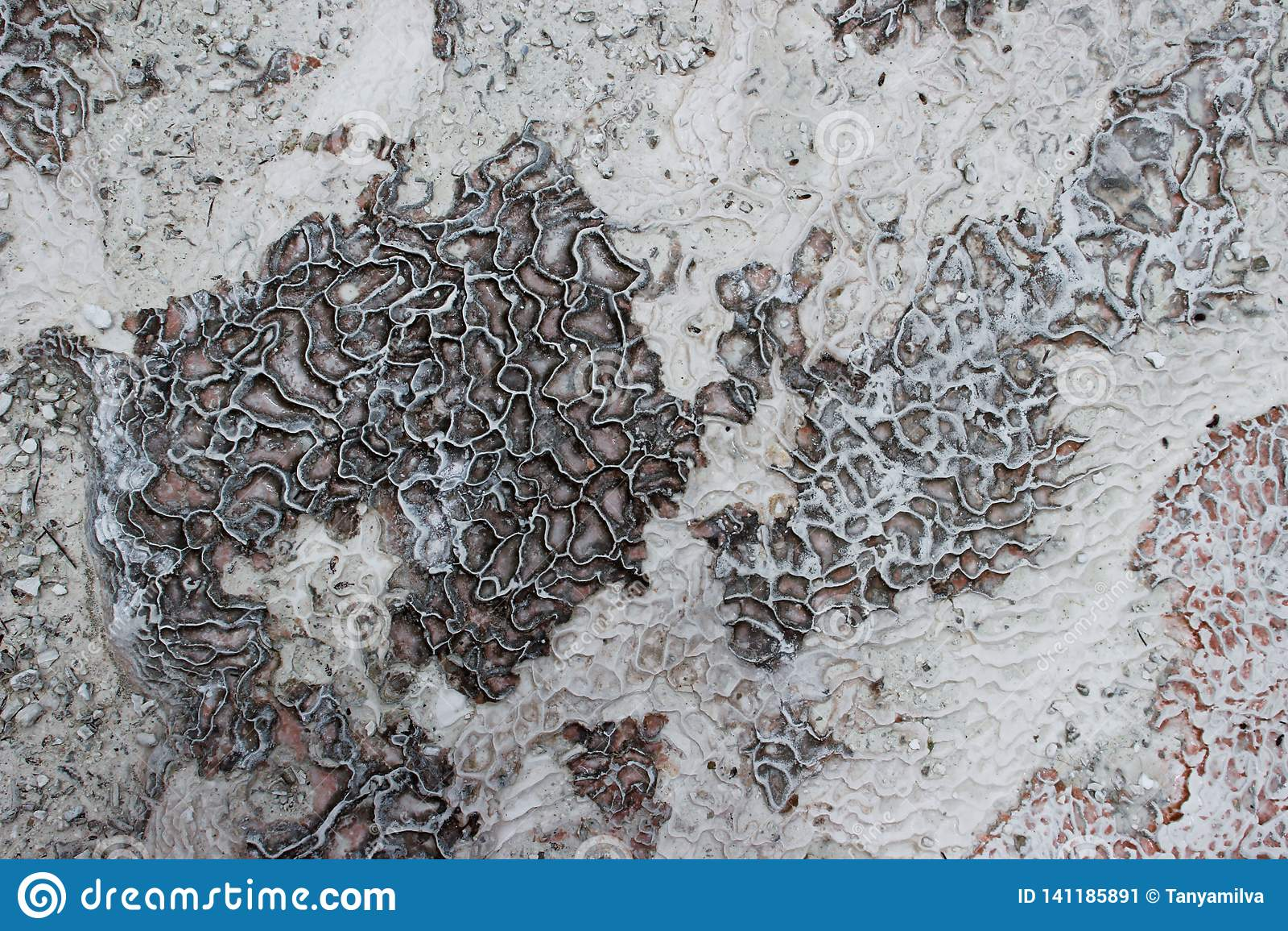 O fundo e a textura do mineral de carbonato deixado pela água de fluxo no castelo do algodão, Pamukkale