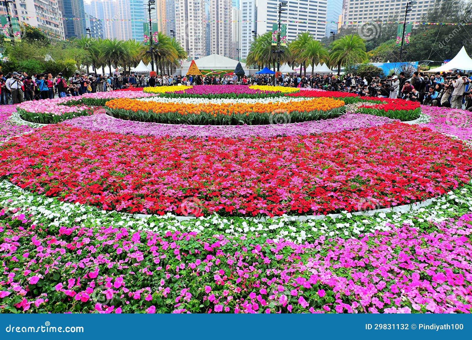 Mostra de flor internacional 2013 de Hong Kong