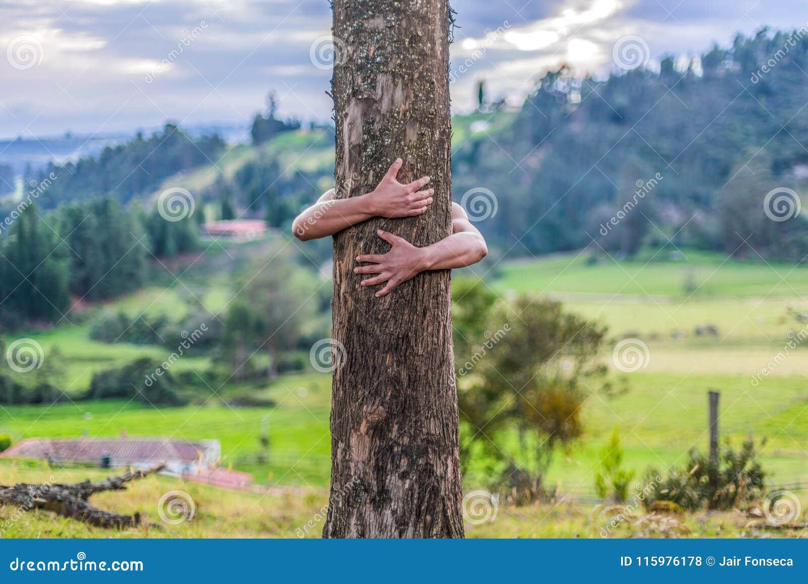 O homem abraça a árvore grande