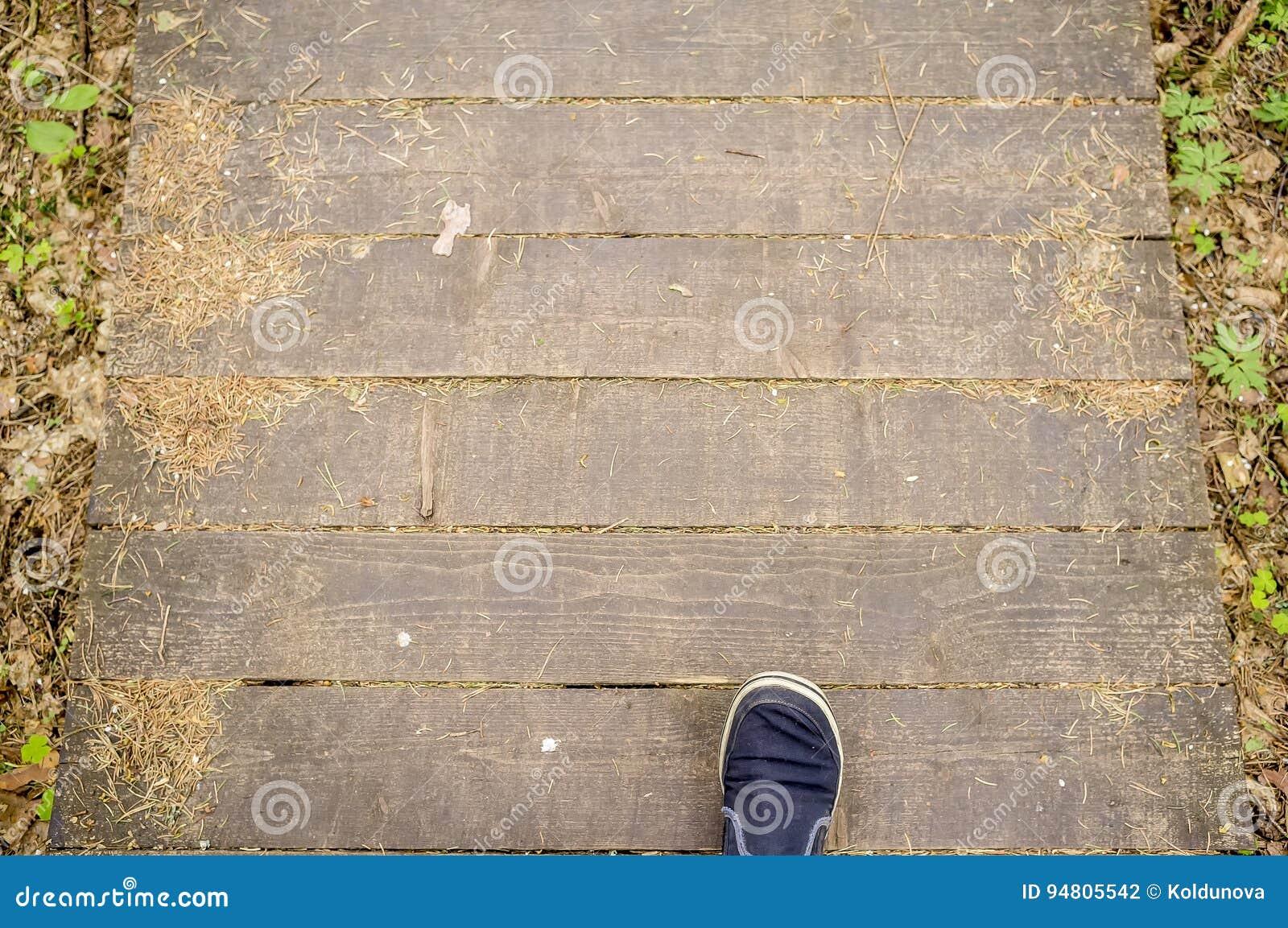 O homem anda ao longo de um trajeto ecológico feito das placas, na floresta