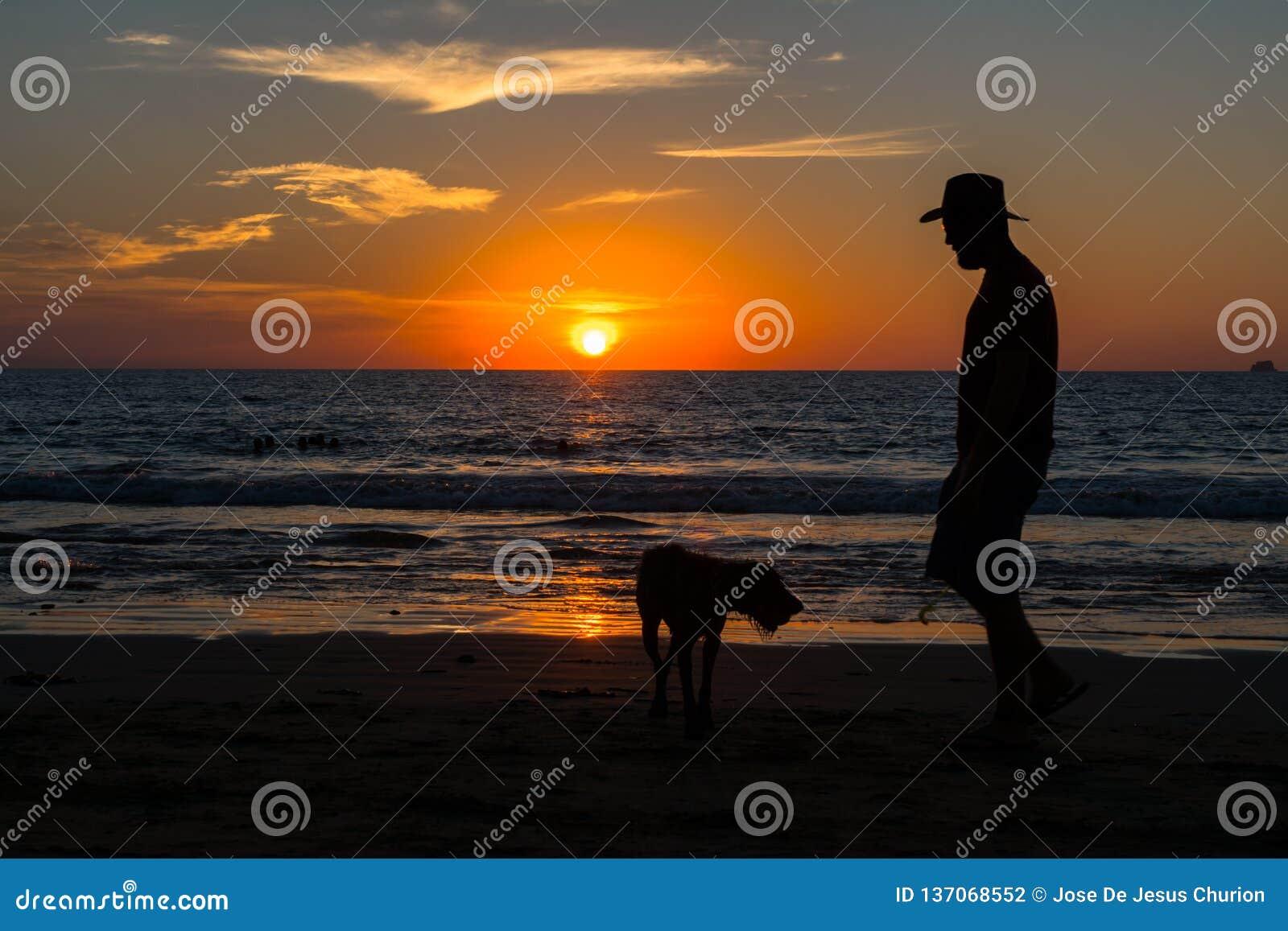 O homem e sua caminhada do cão no por do sol