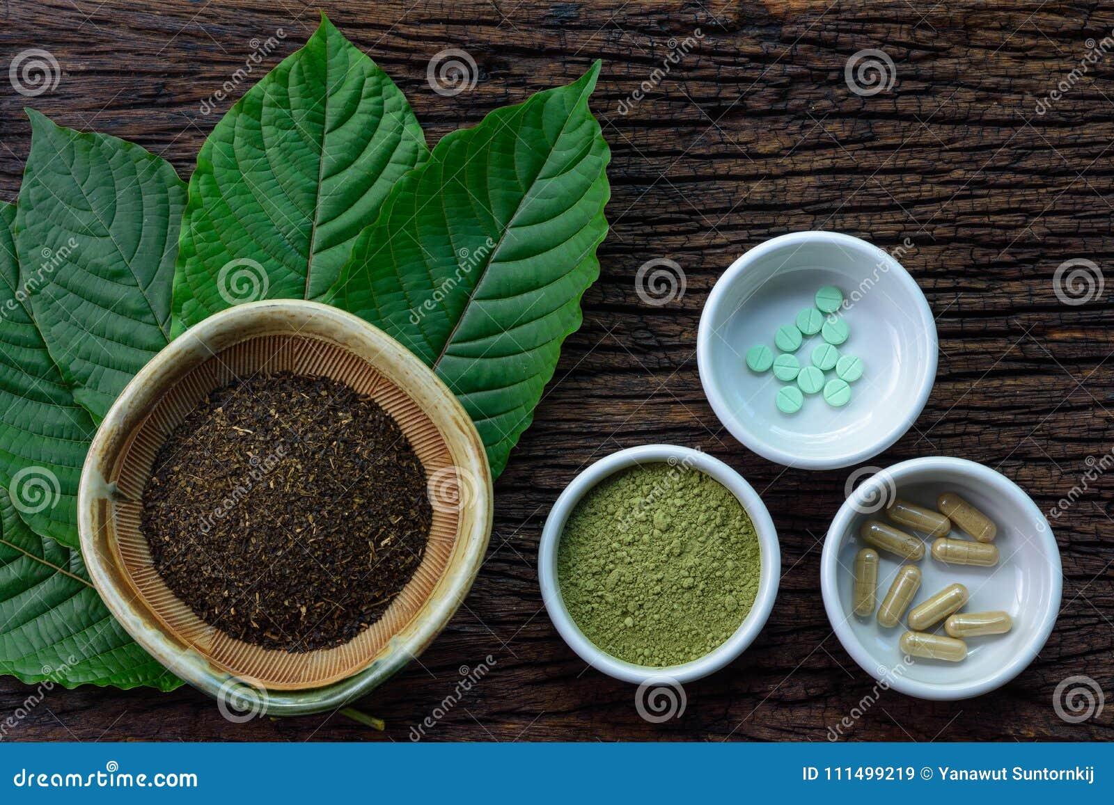 O kratom do speciosa de Mitragyna sae com os produtos da medicina no pó, nas cápsulas e na tabuleta na bacia cerâmica branca na t