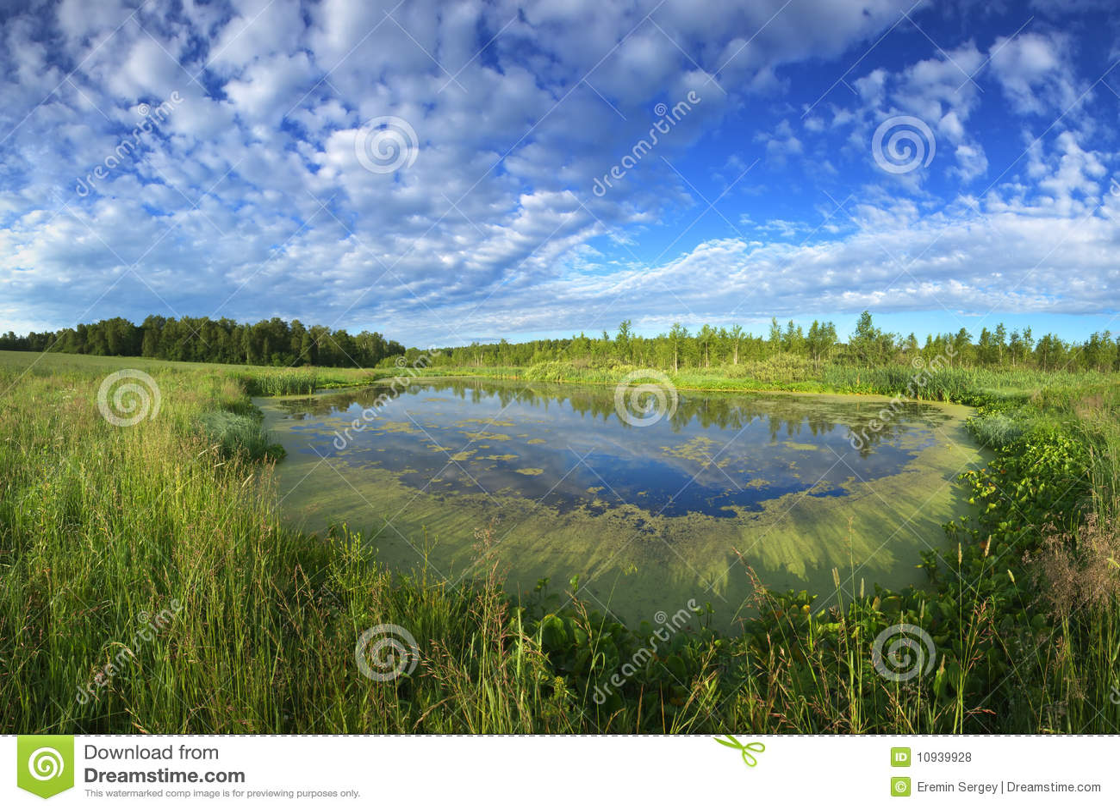 O lago olha no céu