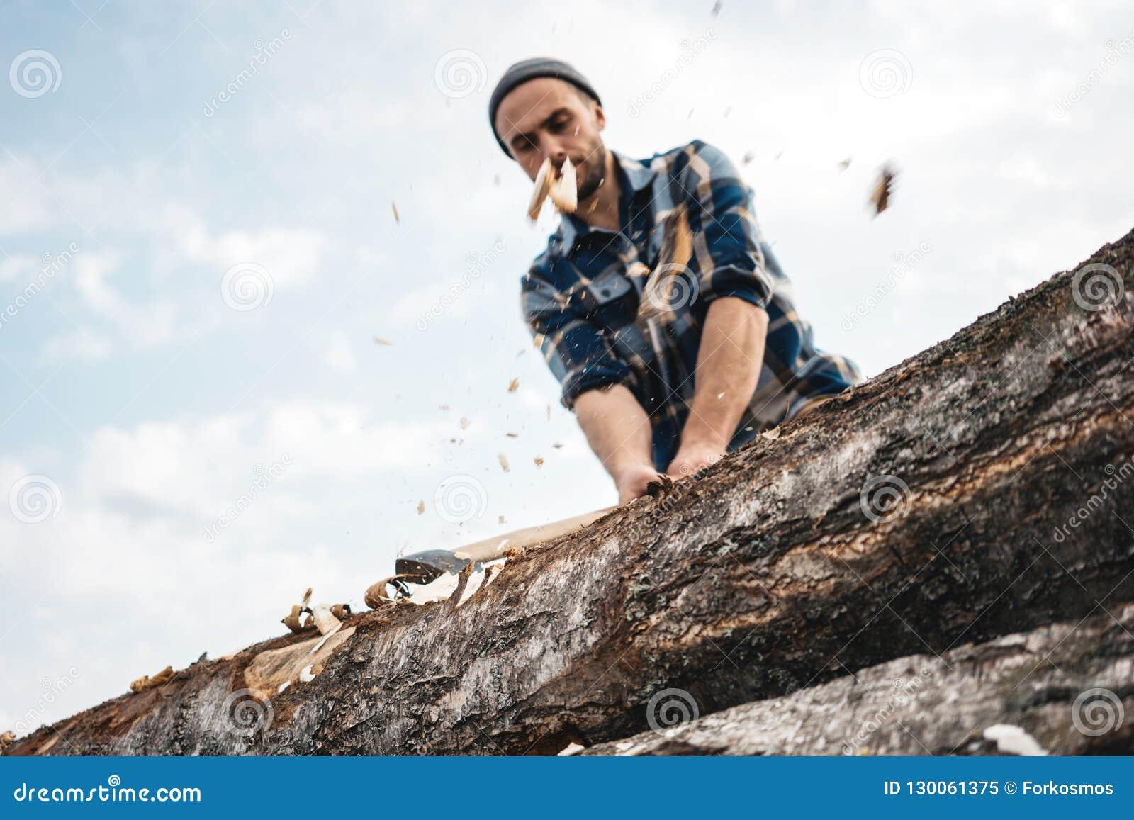 O lenhador forte e brutal com o machado em suas mãos desbasta a árvore na floresta, microplaquetas de madeira voa distante