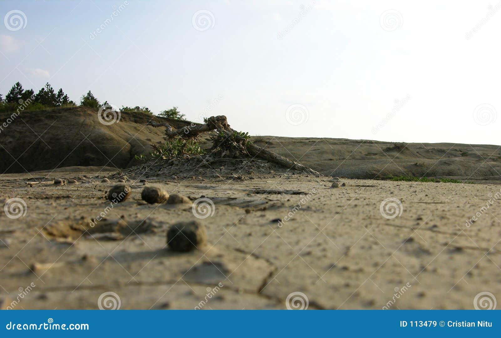 O limite de um deserto