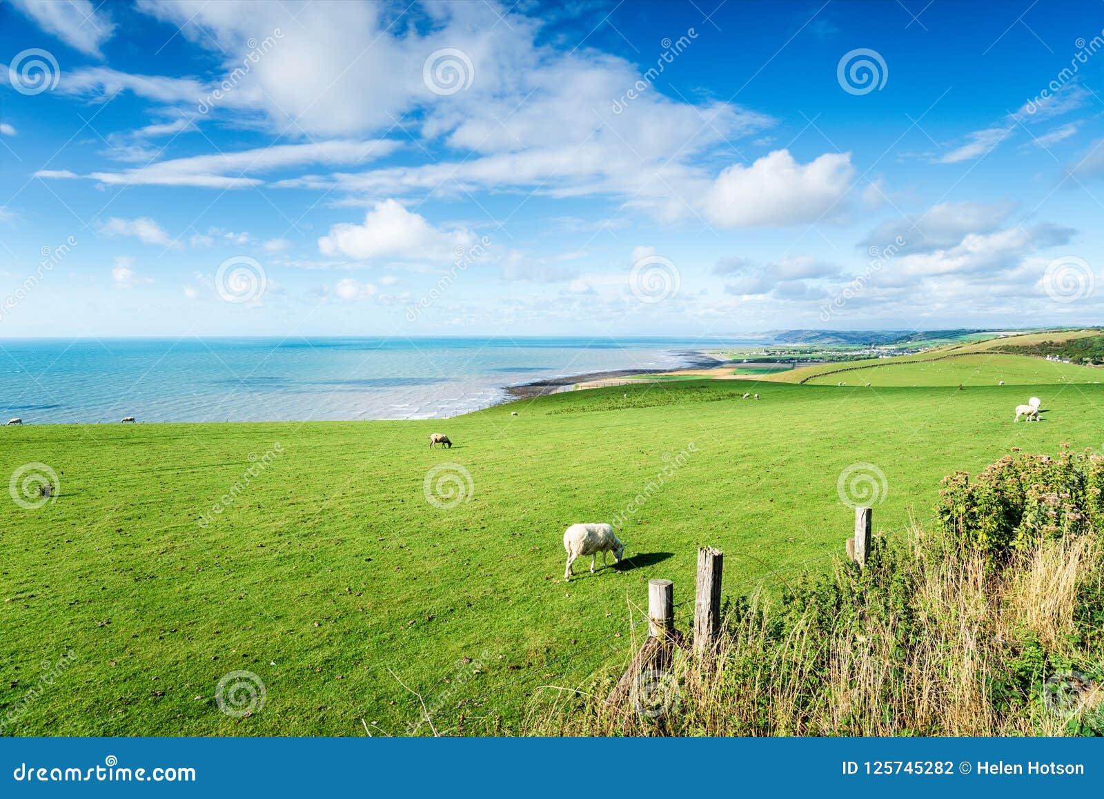 O litoral de Ceredigion em Gales