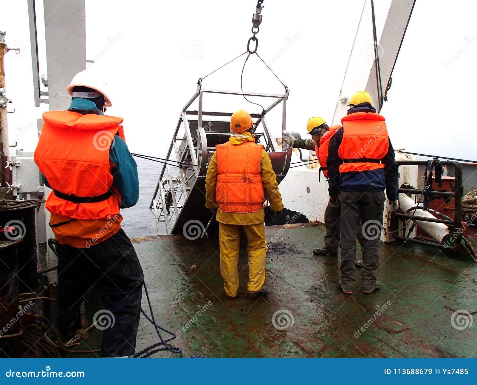 O mar de Okhotsk/Rússia - 24 de julho de 2015: O desenvolvimento epibenthic do pequeno trenó