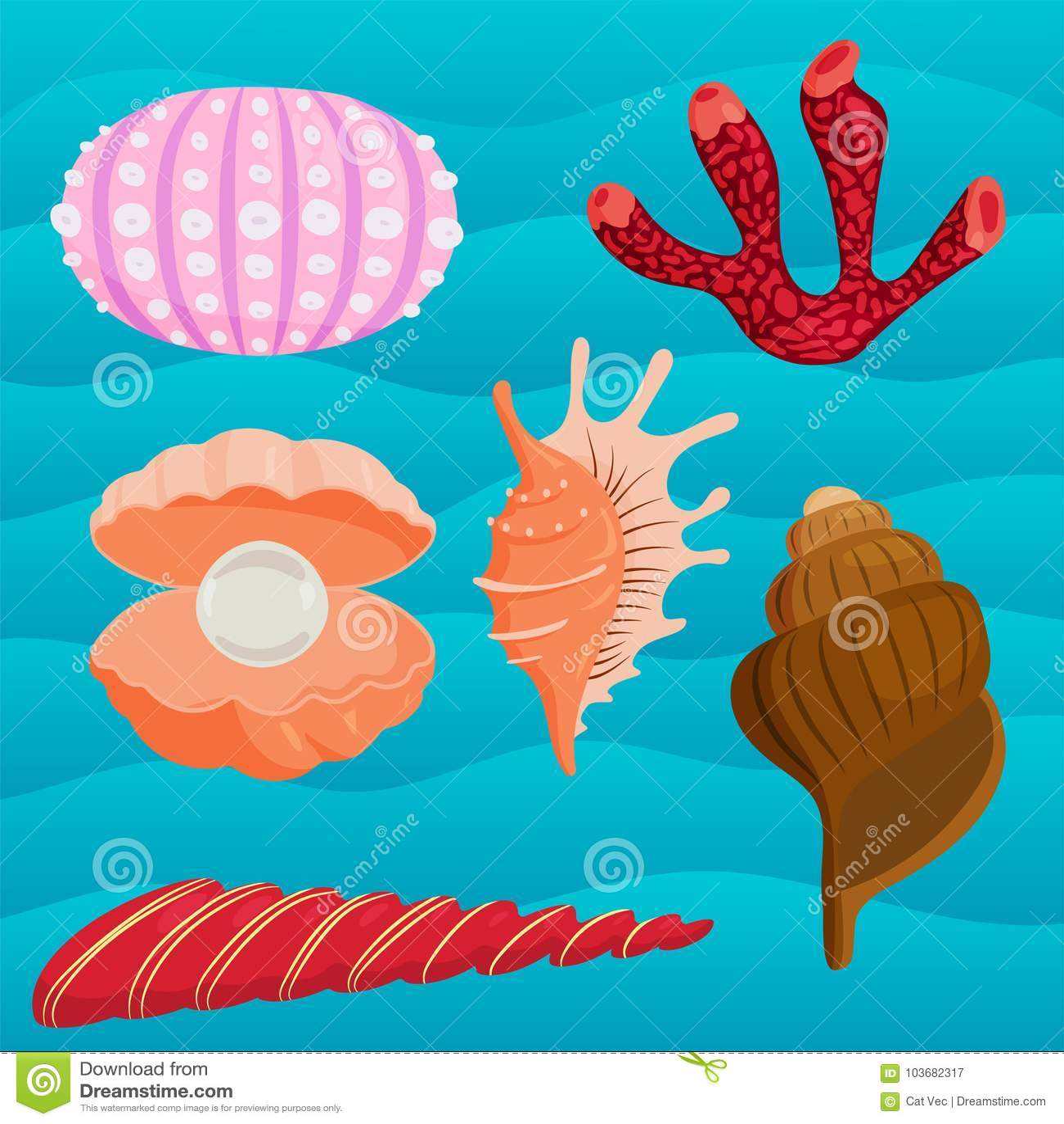 O mar descasca a ilustração coralina marinha do vetor da parte superior dos desenhos animados e da estrela do mar do oceano