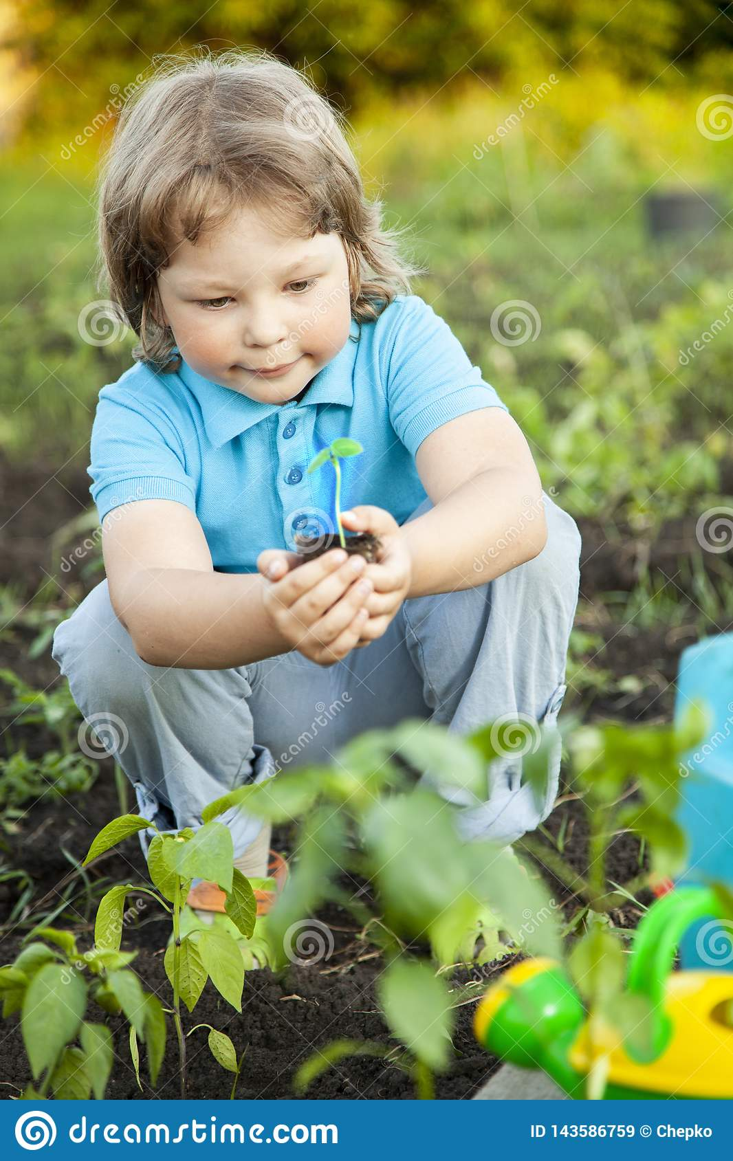O menino no jardim admira a planta antes de plantar Broto verde nas mãos das crianças
