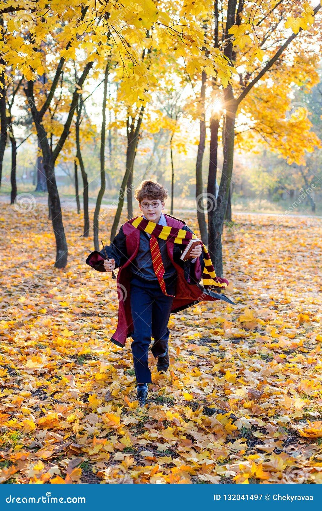 O menino nos vidros corre no parque do outono com folhas do ouro, guarda o livro em suas mãos