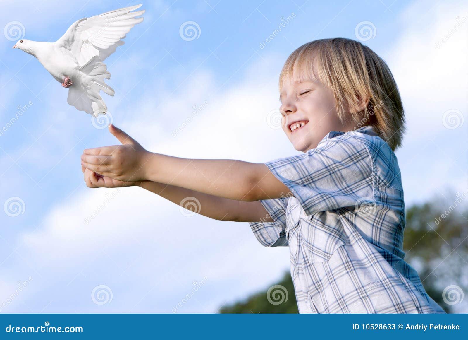 O miúdo e o pombo branco