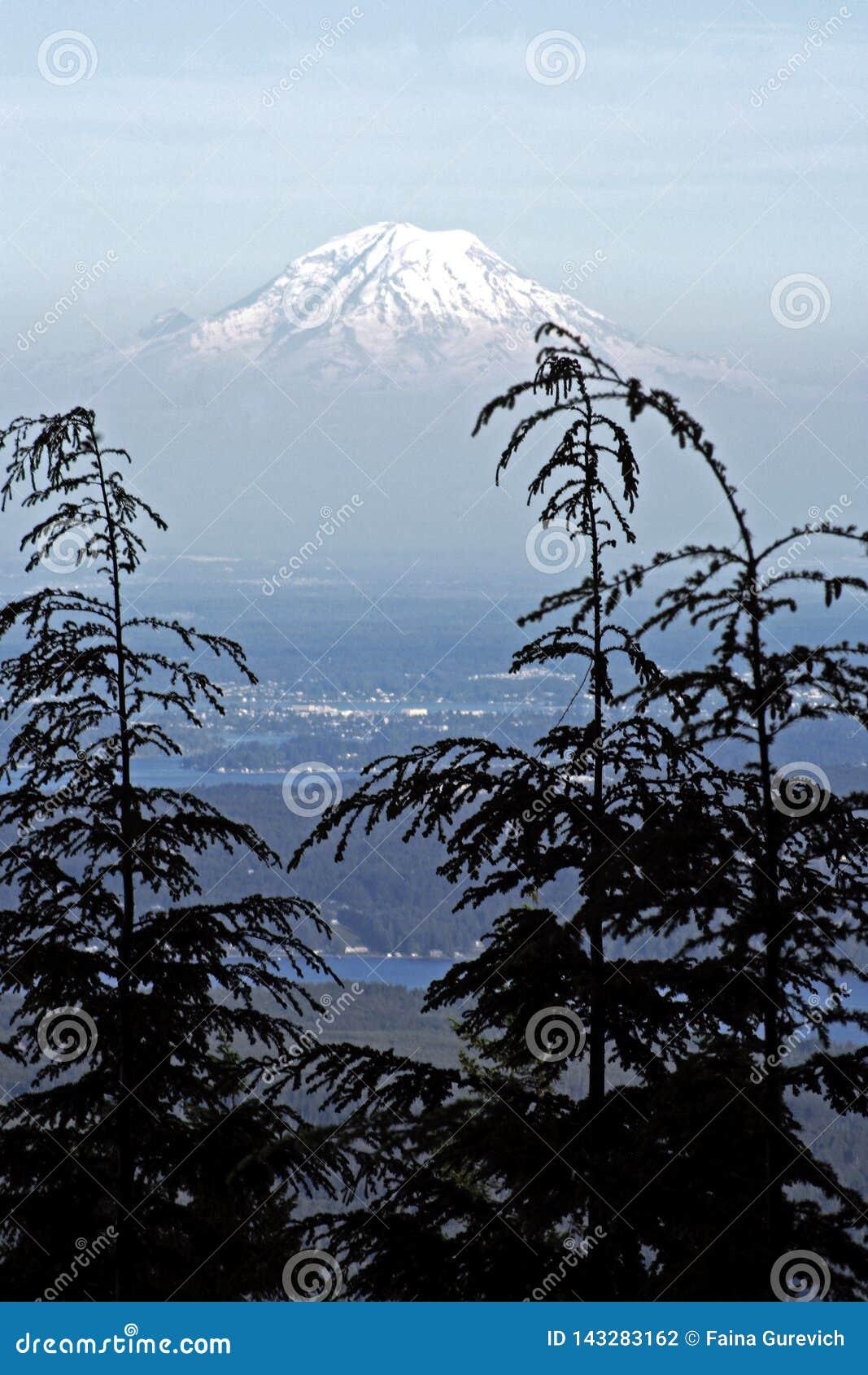 O Monte Rainier através das nuvens e da floresta