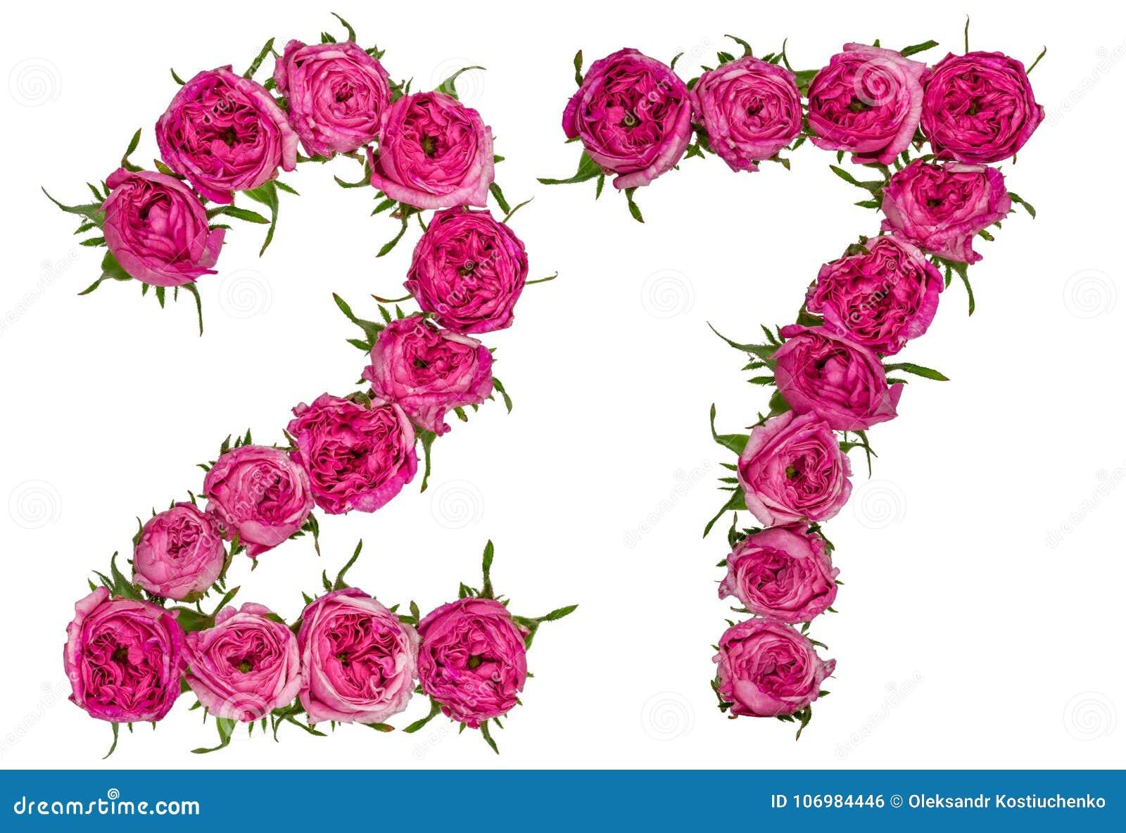 O numeral árabe 27, vinte e sete, das flores vermelhas de aumentou, isola
