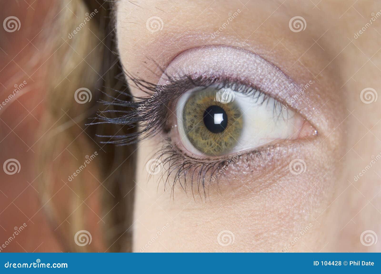 O olho 2