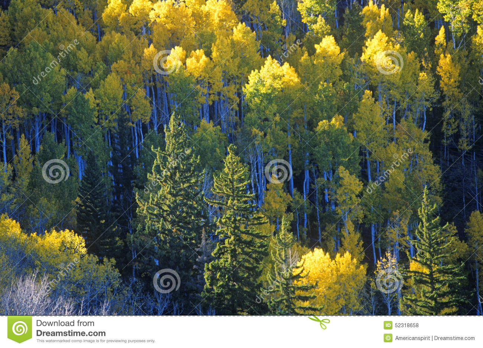 O outono colore Santa Fe National Park, nanômetro