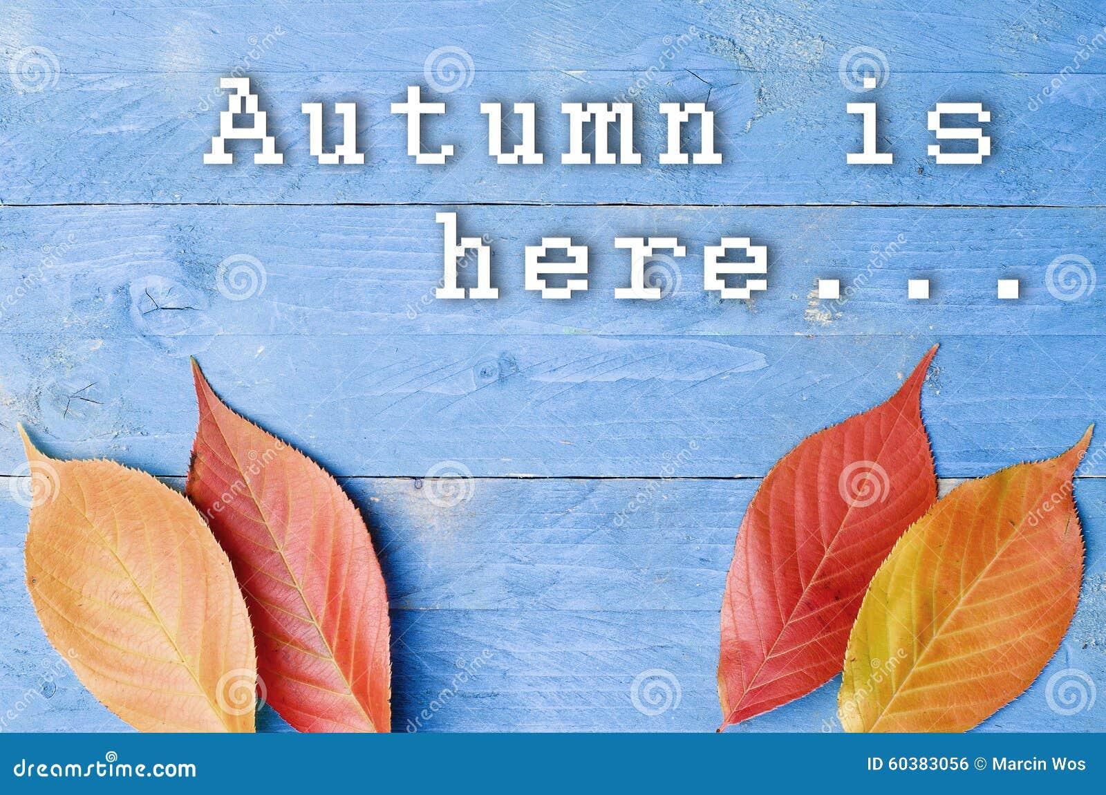 O outono está aqui escrito no fundo azul, de madeira com folhas coloridas