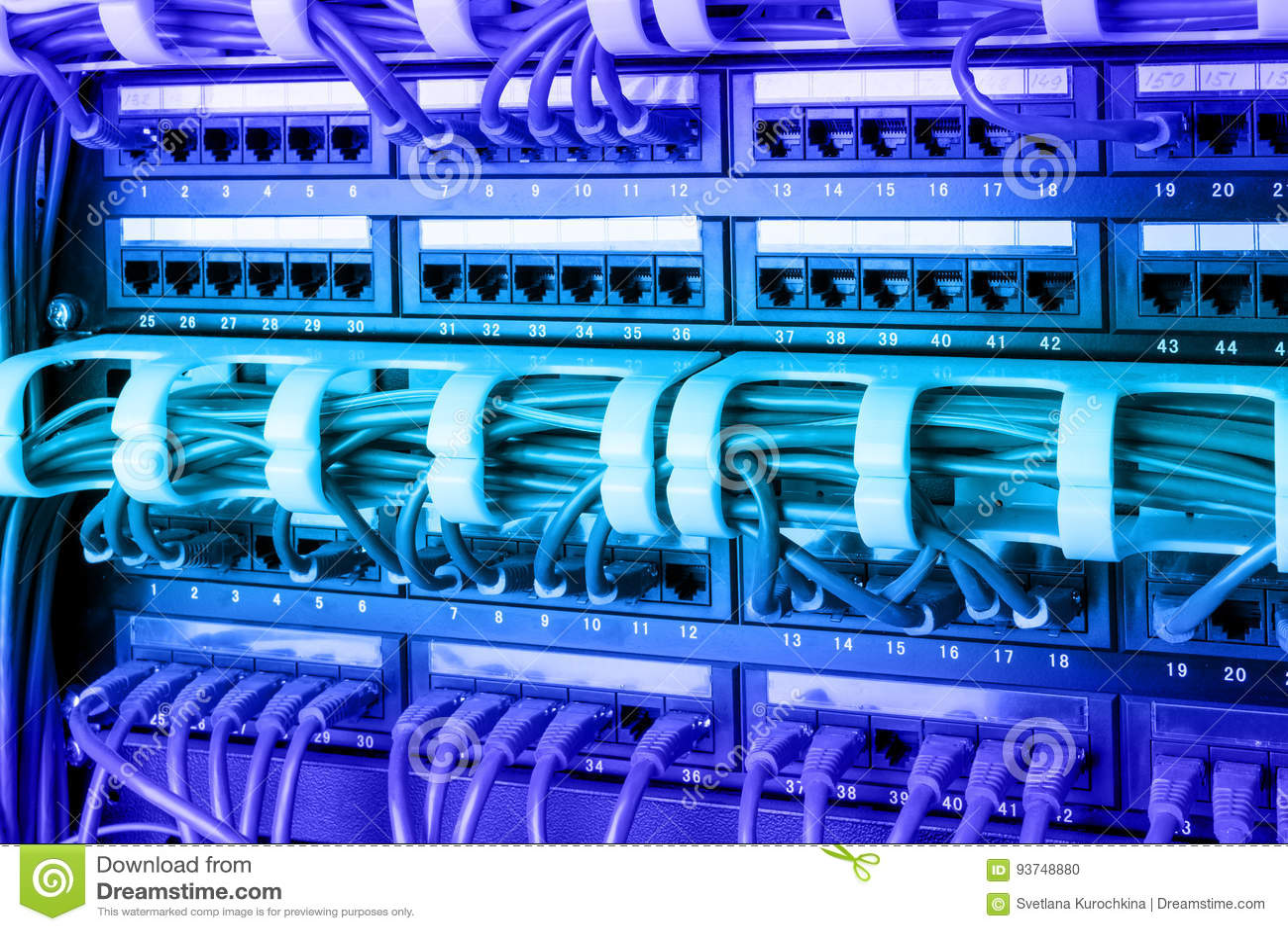 O painel, o interruptor e o Internet da rede cabografam no centro de dados Interruptor preto e cabos ethernet azuis, conceito do