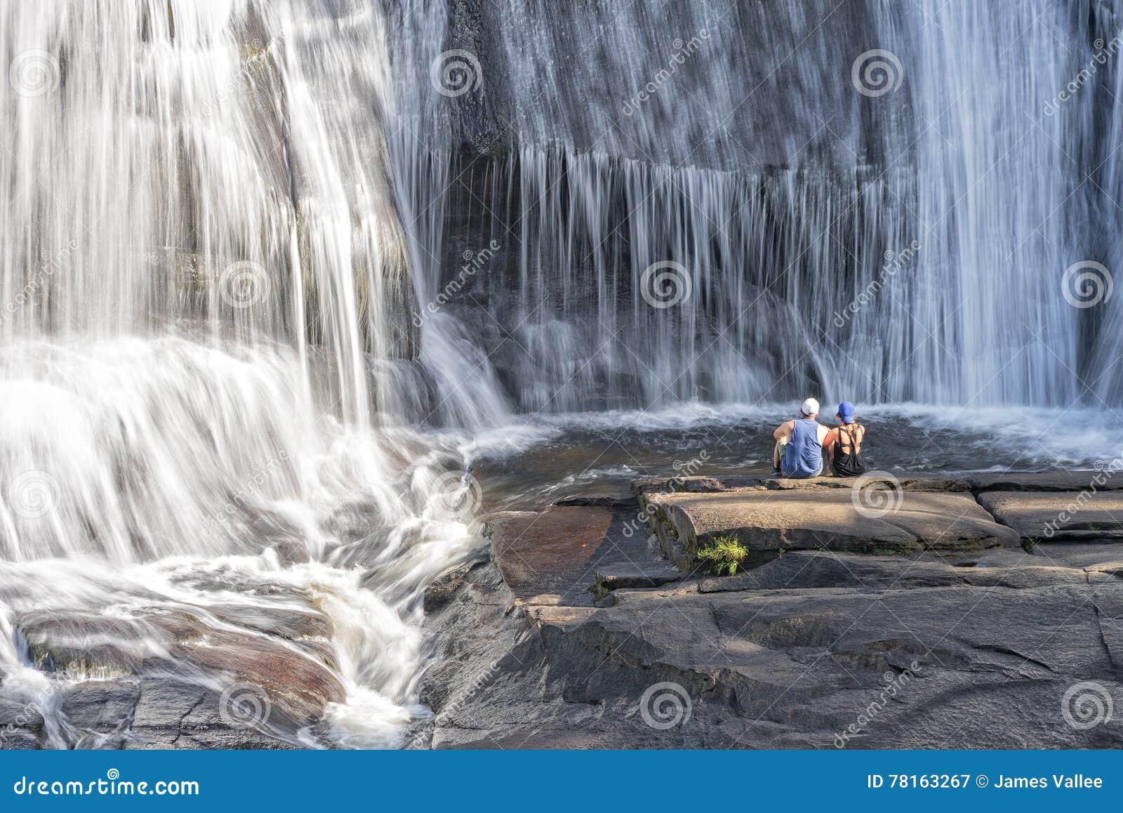 O par novo que aprecia a elevação cai na floresta do estado de Du Pont