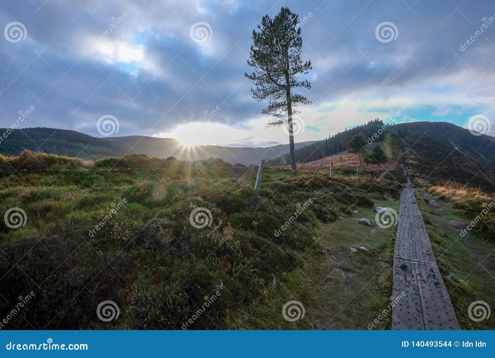 O parque nacional das montanhas de Wicklow