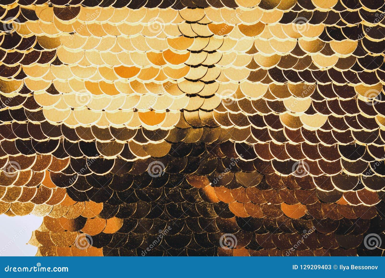 O peixe escala brilhante dourado vislumbra em cores diferentes glamorous