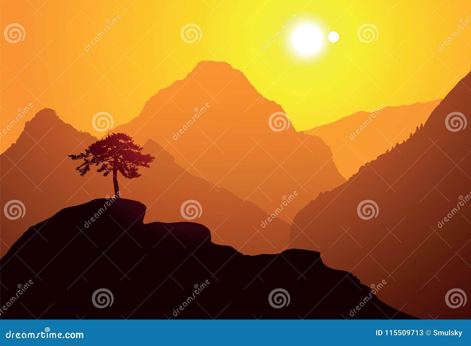 O pinheiro na montanha