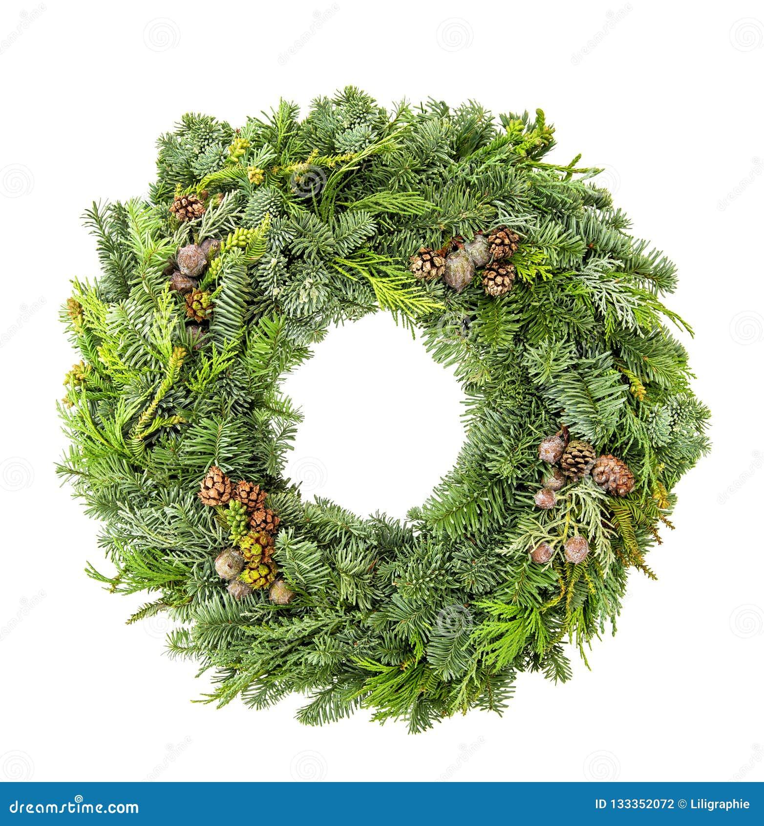 O pinho do abeto da grinalda do Natal enfeita o fundo branco