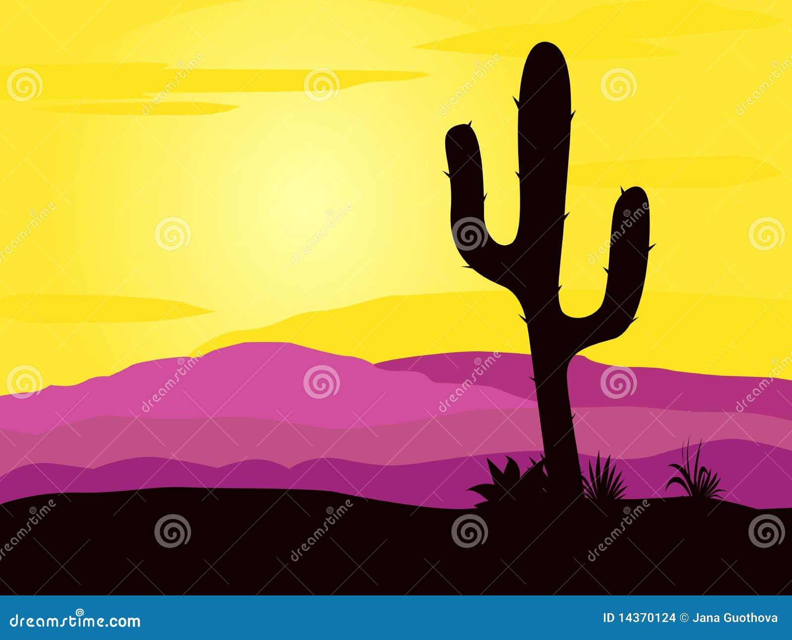 O por do sol do deserto de México com cacto planta a silhueta