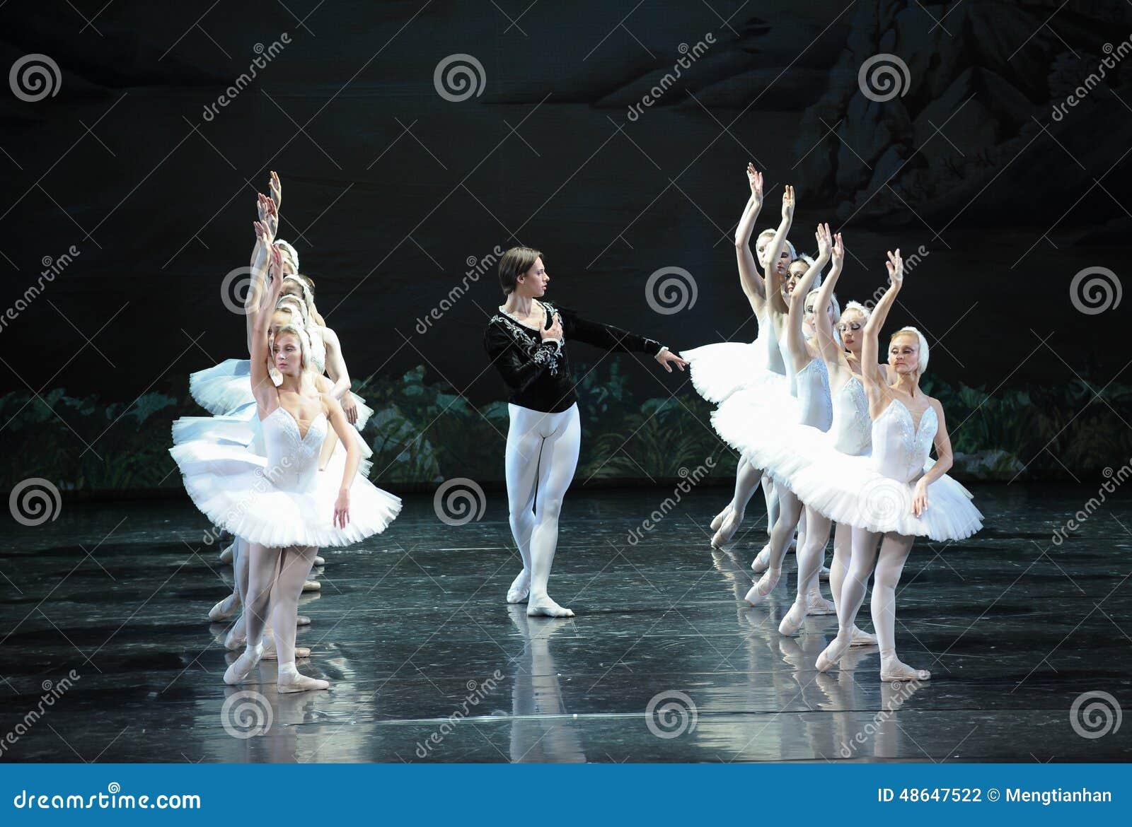 O príncipe à procura da cisne branca de seu amor-bailado O Lago das Cisnes