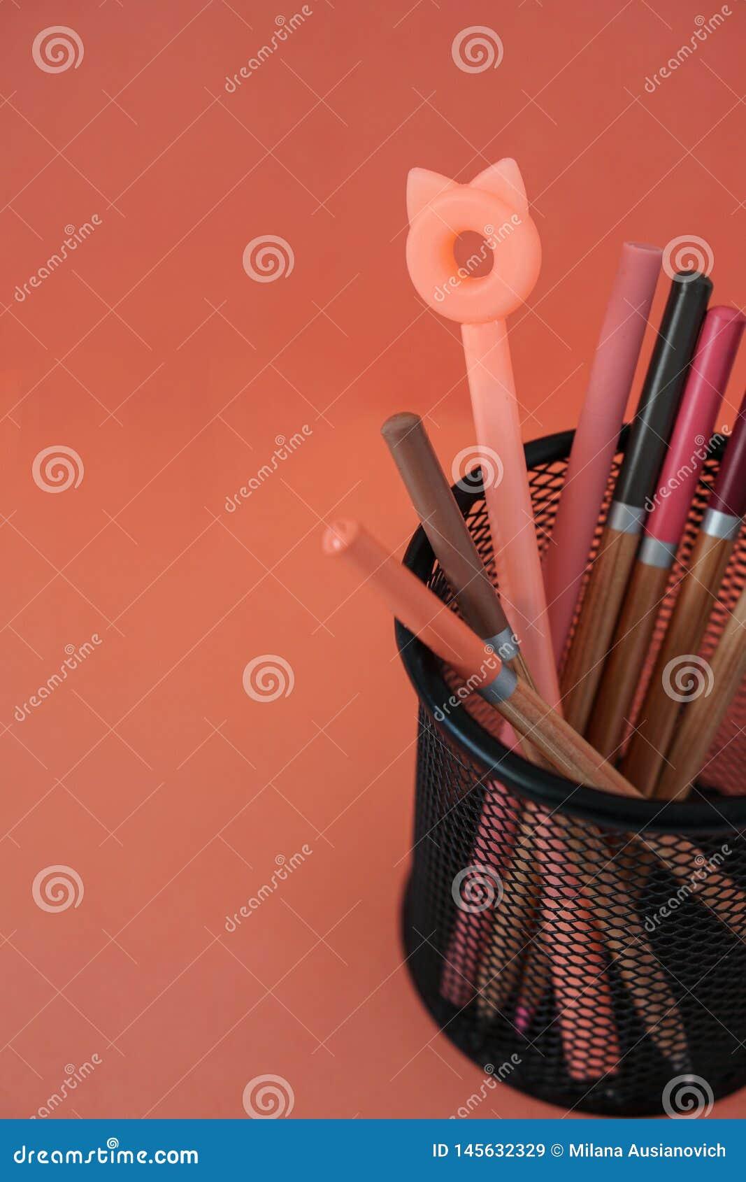 O r 与猫耳朵和铅笔的笔在红色背景的篮子与赠送阅本空间