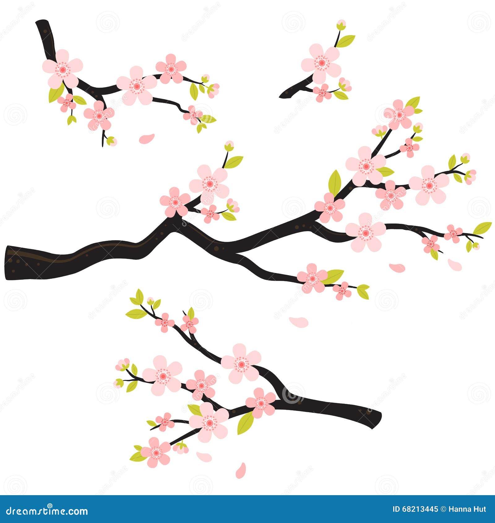 O ramo realístico da cereja de sakura japão com florescência floresce