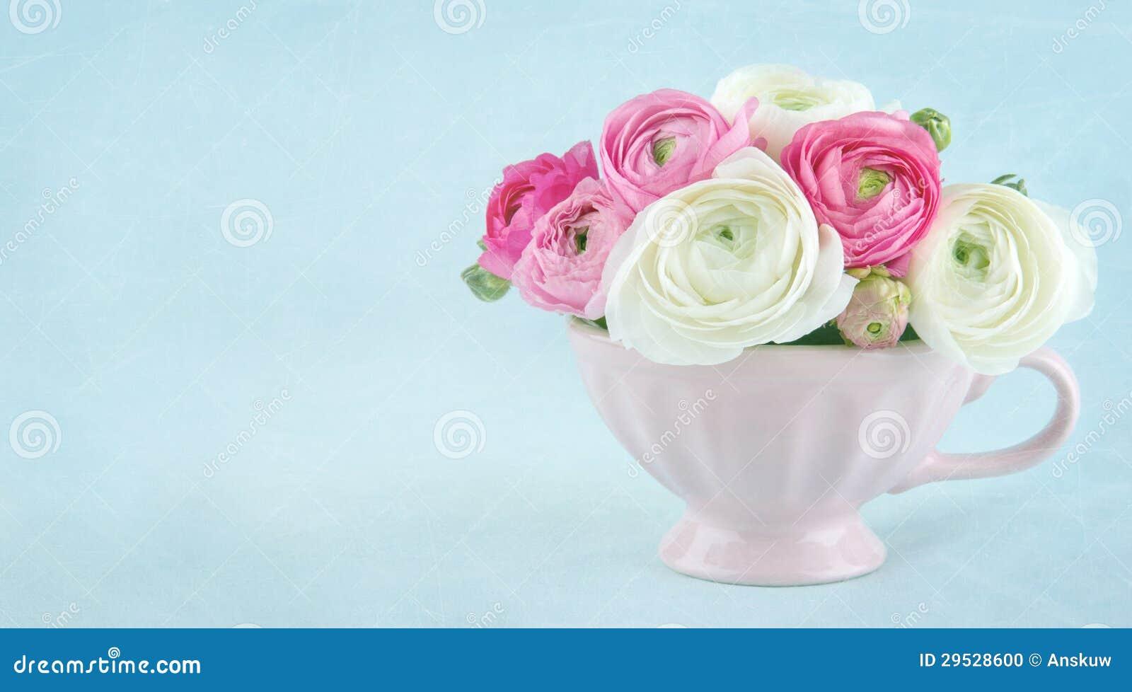O ranúnculo floresce em um copo cor-de-rosa com espaço da cópia