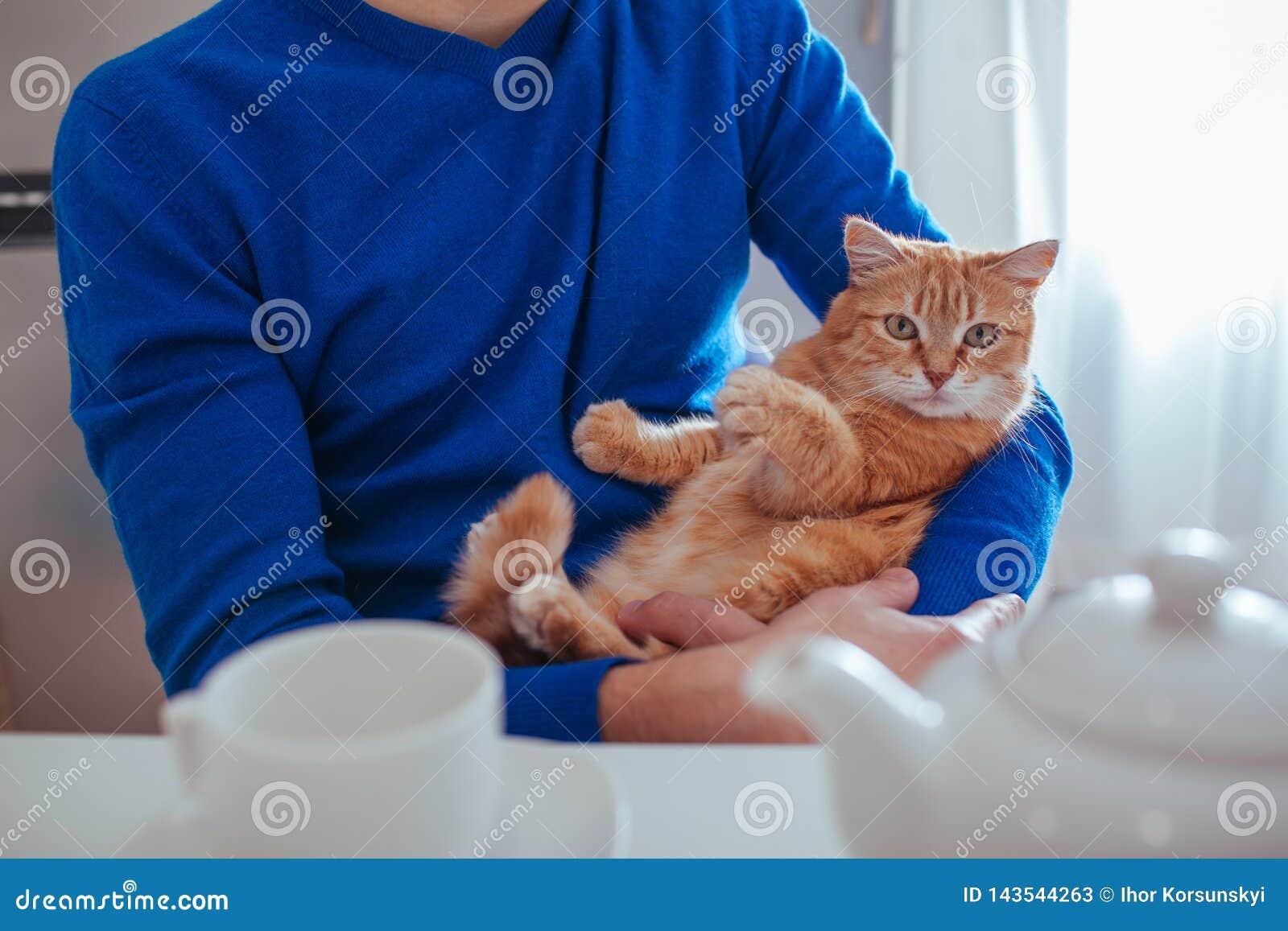 O retrato do homem novo consider?vel guarda um gato vermelho em seus bra?os na cozinha