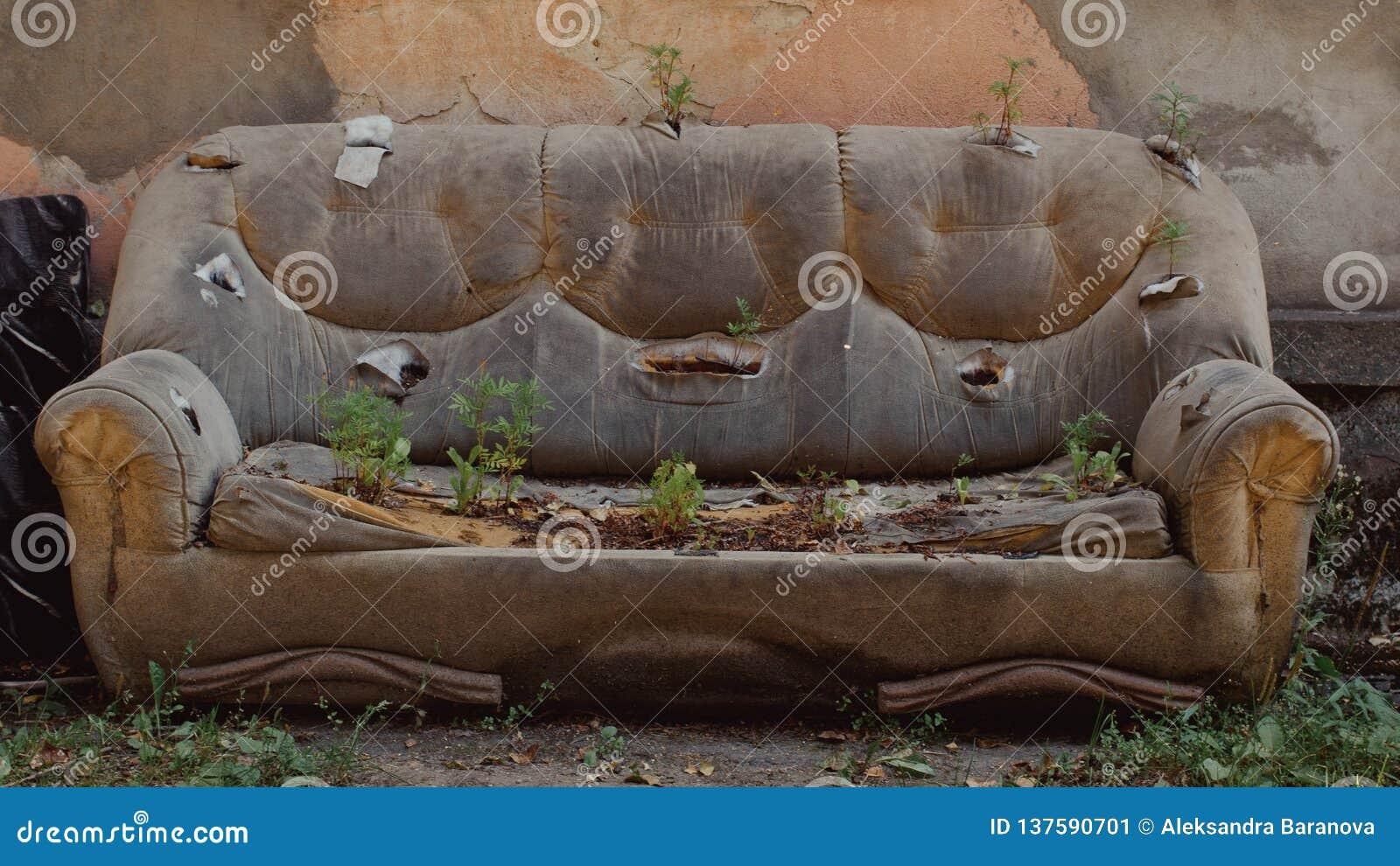 O sofá abandonado de couro velho na rua na fachada da casa destruída, as plantas brotou através do estofamento do