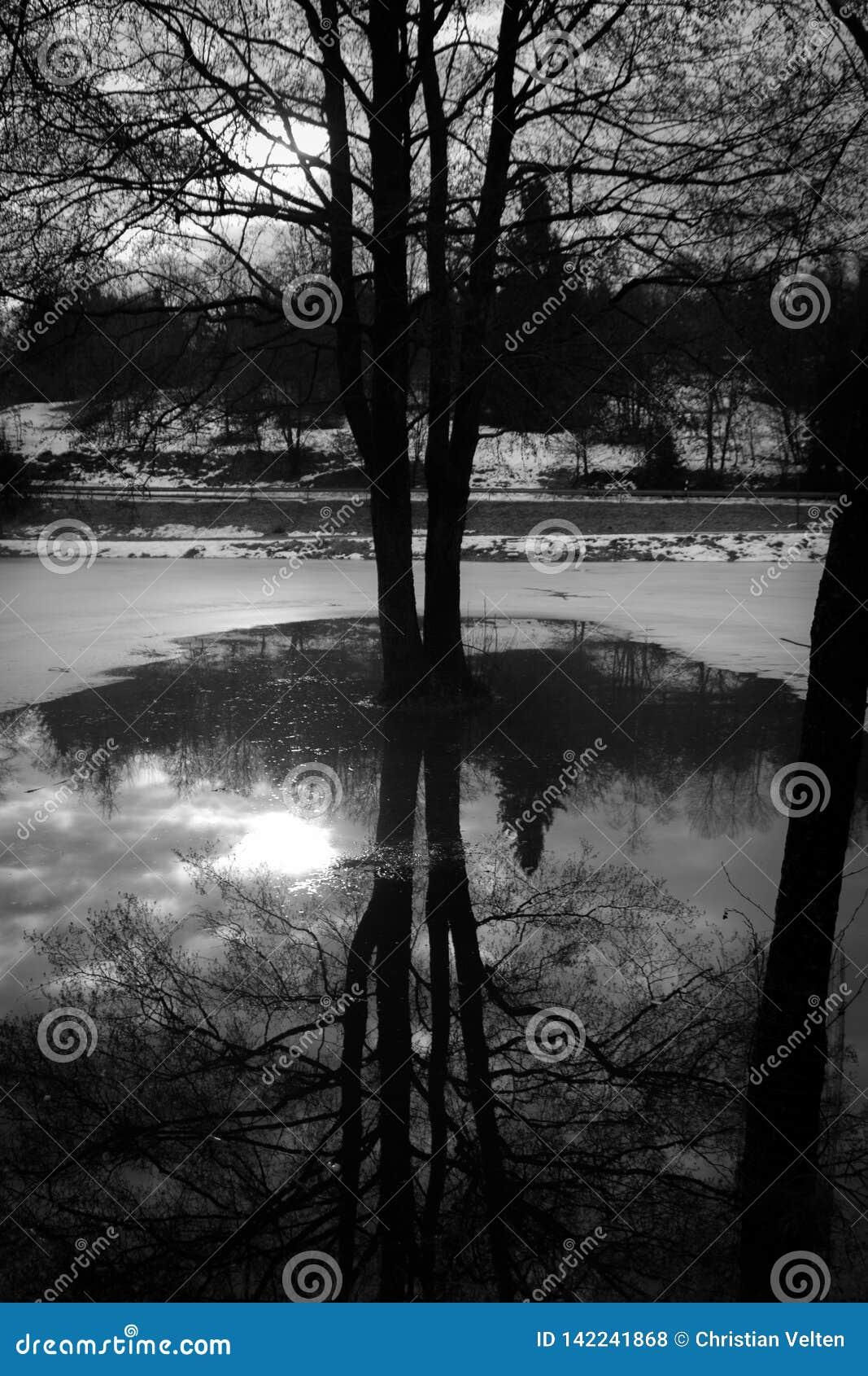 O sol no espelho no lago