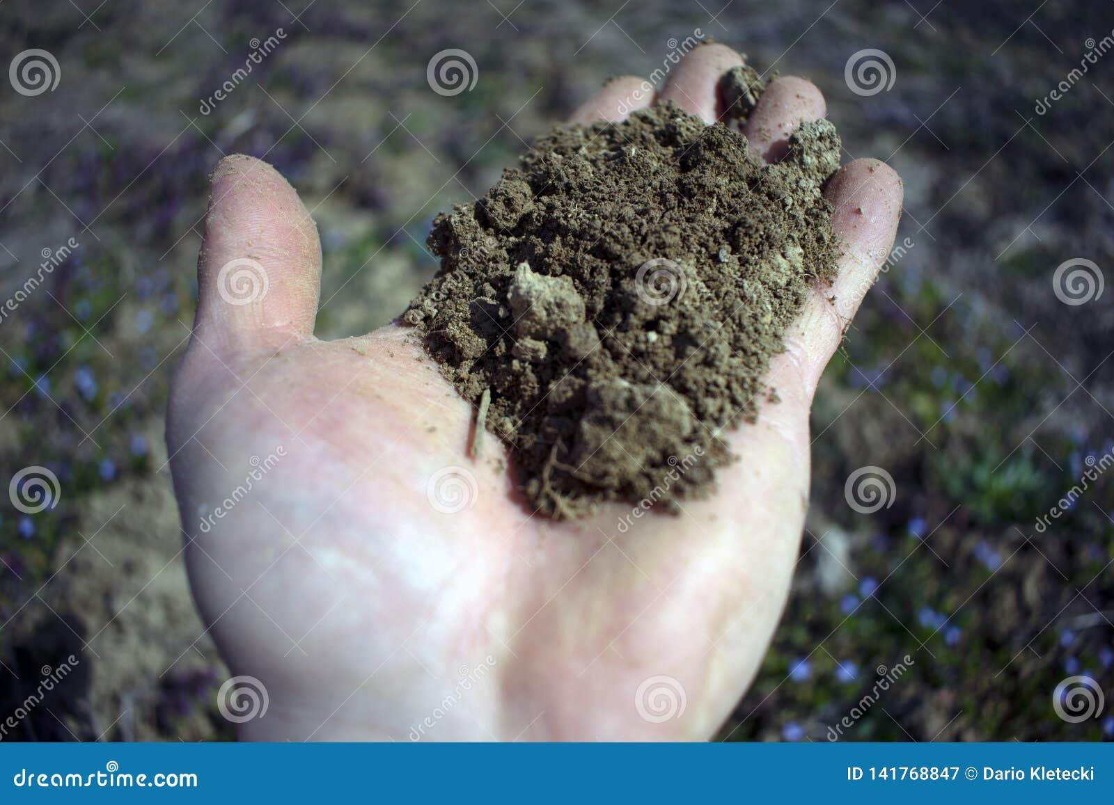O solo equipa dentro a mão com fundo obscuro