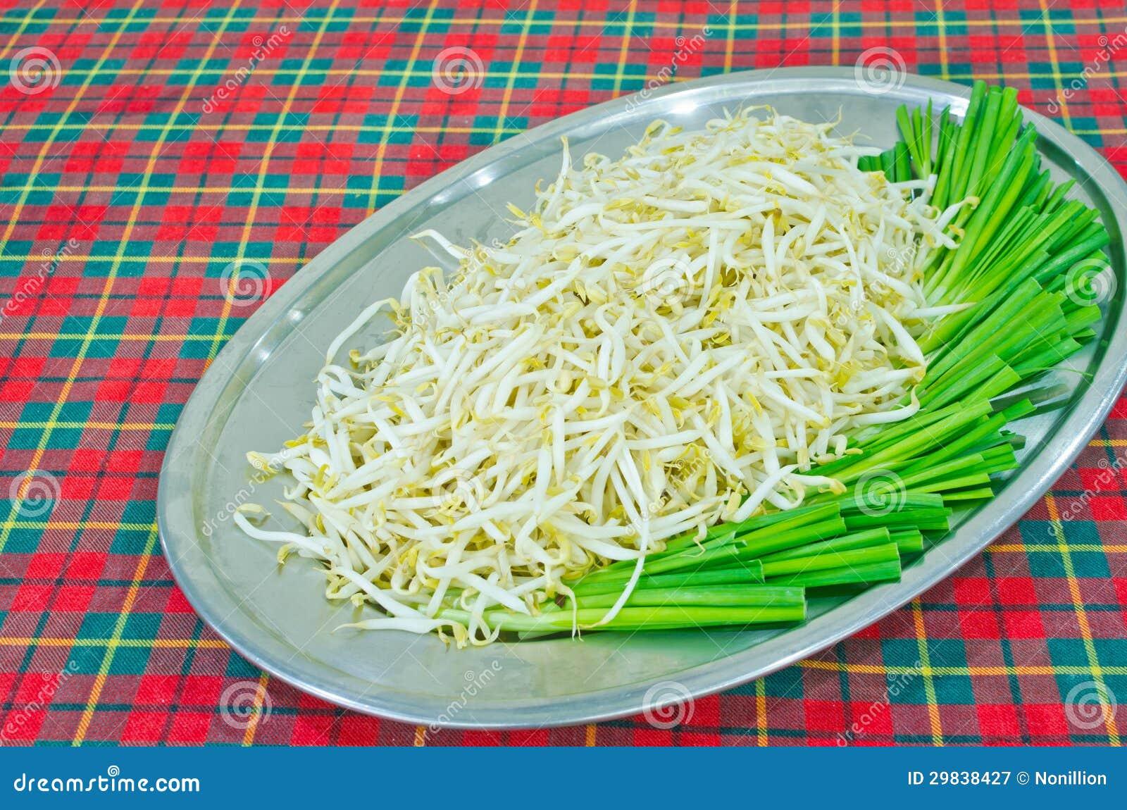 Sprout de feijão