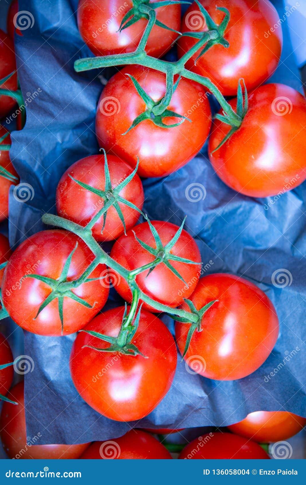 O tomate do conjunto é um vegetal
